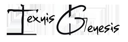 Texnis Genesis - Παιδικές Παραστάσεις